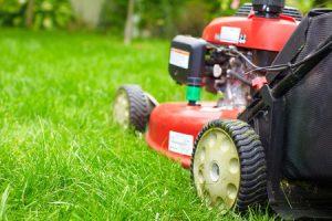 Ein Rasenmäher im Garten